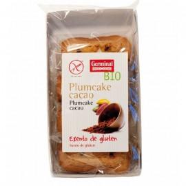 Plumcake sin gluten de cacao 180g