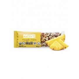 Barrite de Piña Bio Taste of Nature 40g
