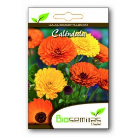 Semillas Calendula Pacific Beauty Sin Tratar