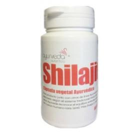 Shilajit Ayurveda Autentico 60 cápsulas