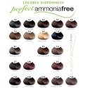 Tinte Perfect AmmoniaFree 6.0 Rubio Oscuro