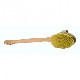 Cepillo de Fibra de Cactus