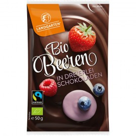 Mix de Frutos Rojos con Chocolate Negro Bio 50g