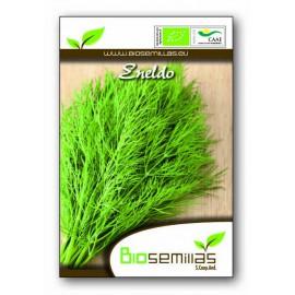 Semillas Ecológicas de Eneldo Anethum Graveolens