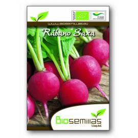 Semillas Ecológicas de Rabano Rojo Saxa
