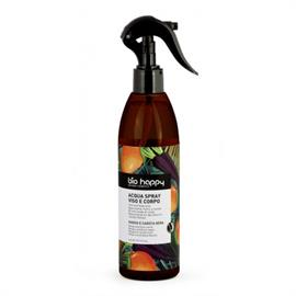 Agua Refrescante de Mango y Zanahoria Morada BioHappy Bio 300ml